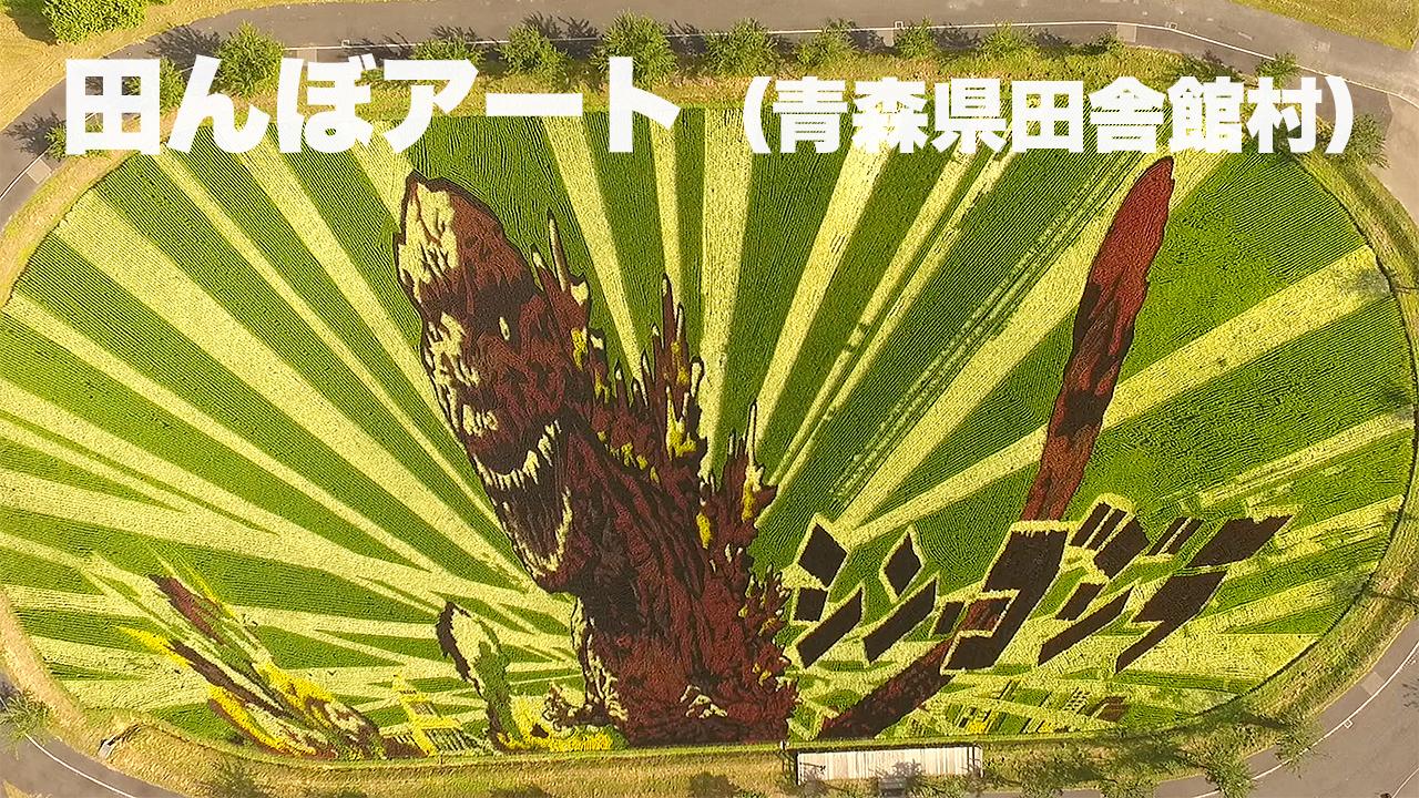 【田んぼアート】青森県田舎館村 : 2016年 : 第1・第2会場